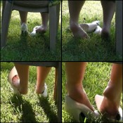 Scarlet Shoe Dipping in Grass